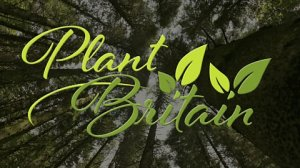 Get involved in the BBC Countryfile Plant Britain campaign